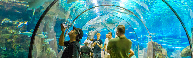 Barcelona Aquarium Information Page Barcelona Tour Guides hnczcyw ...